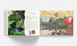 Brochure Design, Capabilities Brochure, Spread, Zielinski Design Associates