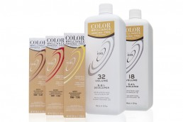 Ion Color Brilliance - Packaging Design - Zielinski Design Associates - Dallas, Texas
