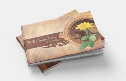Brochure Design, Capabilities Brochure, Spread Zielinski Design Associates
