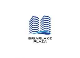 Briarlake Plaza - Dallas, Texas - Zielinski Design Associates - Dallas, Texas